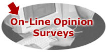 On-Line Opinion Surveys